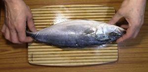 Размораживаем тушку тунца