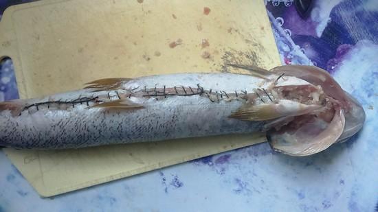 заполните этой начинкой пустую рыбную шкурку