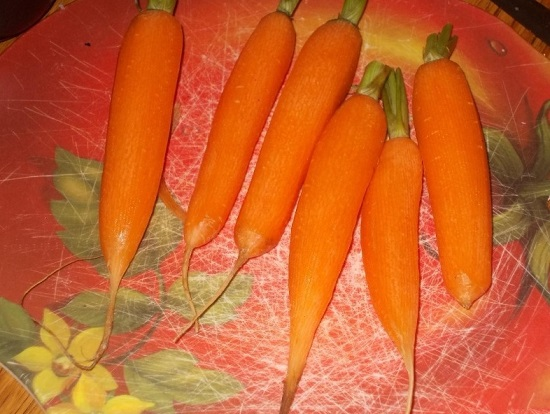 Овощечисткой снимаем с моркови кожицу